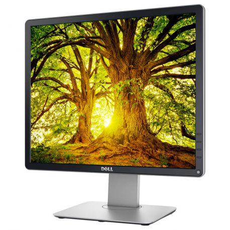 DELL P1914SF - Ecran LCD de bureau 19 pouces