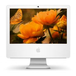 Apple iMac 24'' A1200 (EMC 2111) 2.16Ghz 2Go 250Go - Unité Centrale