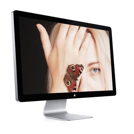 Apple Cinema Thunderbolt 27'' A1407 emc 2432 - MC914LL/A - Grade B - Ecran Mac